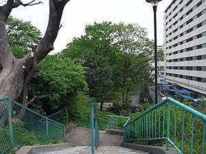 都営戸山公園