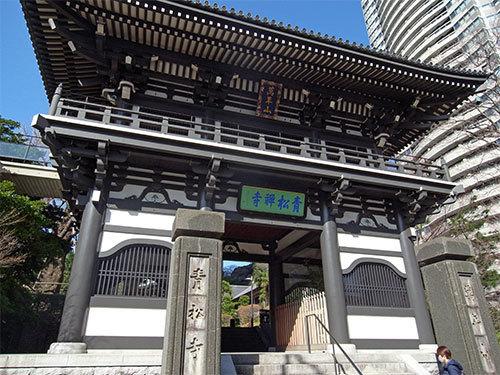 青松寺の山門
