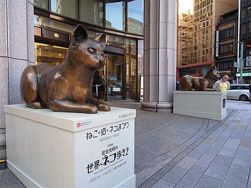 180511mitsukoshineko.jpg