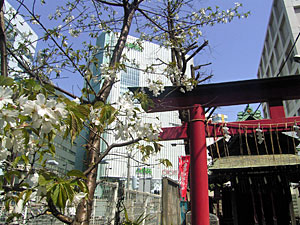 雷電稲荷神社