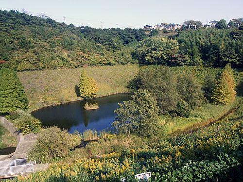 庄戸遊水池