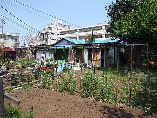家庭菜園の家(大橋)