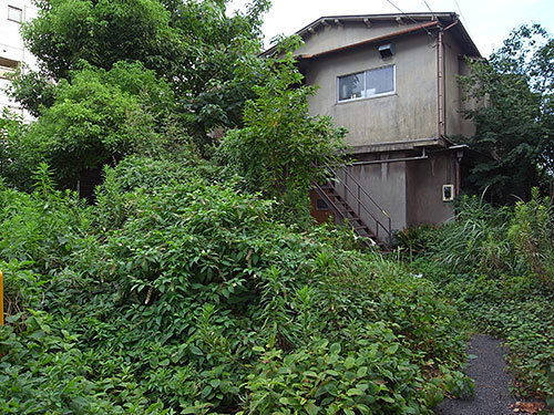 植物繁茂の家(大森北)