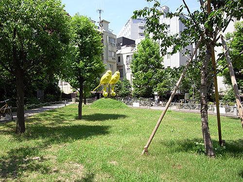 黄色いインコのいる公園(赤坂)
